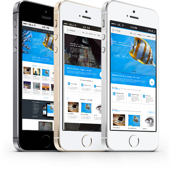 Custom Mobile Apps, Mobile Application Development