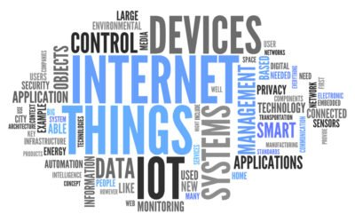 Internet of Things and Small Companies: Growth at its Best